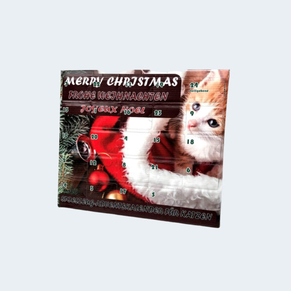 Calendrier Avent Merry Christmas Chat