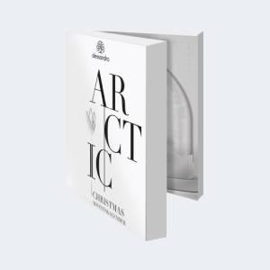 Coffret Calendrier de l'Avent Alessandro ARCTIC 2021